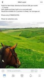 5 acre field for rent ponies sheep with off road parking