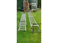 2 sets of cat ladders