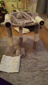 Cat/kitten scratching post