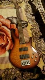 Beautiful peavey bass