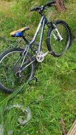 Ridgeback Boys bike