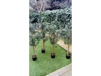 Artificial olive trees 5 ft x 4