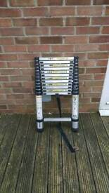 Telescopic Ladders SOLD