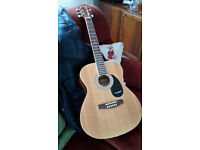 WESTFIELD STEELSTRUNG GUITAR (SMALL BODY) + PADDED GIG BAG