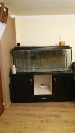 450L aquarium for sale