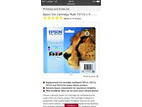 Epson ink x2 packs new condition