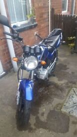 YAMAHA YBR 125 - 2009 - BLUE - 6545 MILES - LOW MILEAGE - STARTS FIRST TIME EVERY TIME