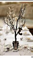 WEDDING Decor & 4 ANY Event-Wedding/Birthday/Shower/Engagement
