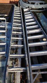 Ladders dubble long 15 tred