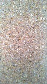 80/20 carpet remnant