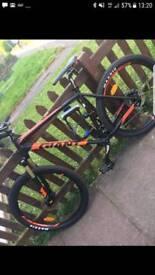 Bike (giant tallon 2 )