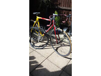Men's full carbon peugeot 1500 road bike
