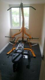 Powertec Leverage gym with attachments and Olympic weights