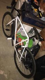 Fixie Push Bike