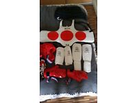 BLITZ Taekwondo karate martial arts protection body armour, helmet,pads, bag
