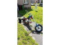 110cc trike