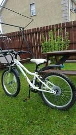 For sale apollo bike