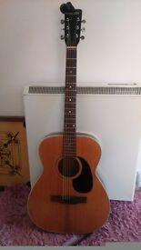 Acoustic guitar, 70s hokado