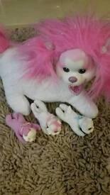 Puppy Surprise Toy