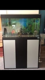 Fluval 125 fish tank full setup