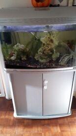 Aqua one aquastyle 850 tank