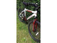 Barracuda men's mountain bike
