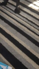 Stripped gray large rug