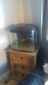 Fish Box with Fluval 2 Plus Filter