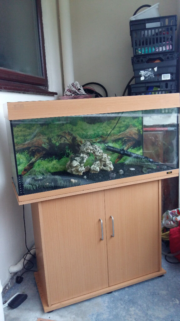 juwel rio 180 liter fish tank and stand for sale in salford manchester gumtree. Black Bedroom Furniture Sets. Home Design Ideas