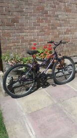 Raleigh mountain bike bargain price