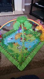 Fisherprice jungle play mat