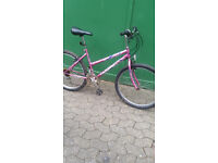 Adult mountain bike bicycle 18 spped good running order