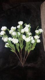 Foam White Roses