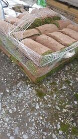 38 square metres turf