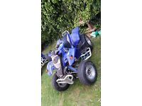 Quadzilla stinger 250cc