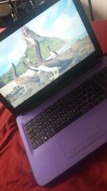 Windows 10 purple HP laptop