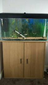 90 litre fish tank with stand and accessories