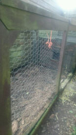 Chicken Coup Hen House Rabbit Hutch/Run