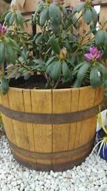 Whisky barrel Flower pot