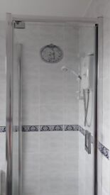 Shower enclosure with panel and pivot door