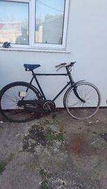 old Hercules bike