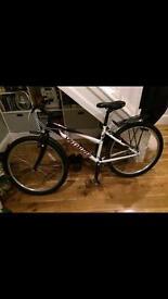 Specialized Men's Mountain Bike
