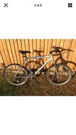 Mongoose rockadile mountain bike