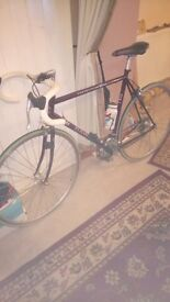 Classic Dawes Competition Cycle Bike