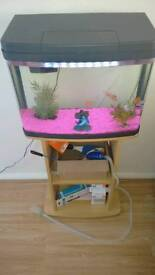 40 litre panorama fish tank and stand included