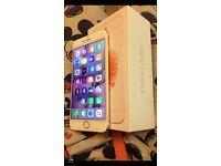 I phone 6s plus rose gold