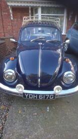 Volkswagan Beetle classic car 1969