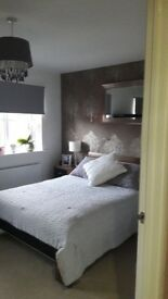 Tiler/ painting & decorating/ fitted kitchen & bathrooms/ wooden & lamiate flooring