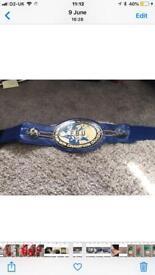 Ebu European title boxing championship belt