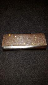 Beautiful Gold Prom Bag